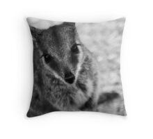 Rock Wallaby B&W Throw Pillow