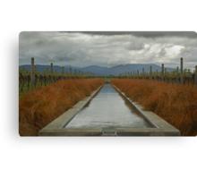 Stormy Vines Canvas Print