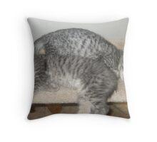 Move over! Throw Pillow