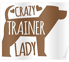 Crazy Trainer Lady Poster