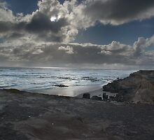 Ocean View by Steven Maynard