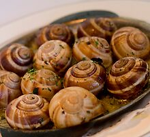 Escargots.. by Sylvia Wu