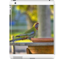 A Changeling in HDR iPad Case/Skin