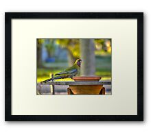 A Changeling in HDR Framed Print