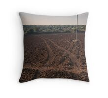 Salt of the Earth - One Throw Pillow