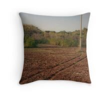 Salt of the Earth - Two Throw Pillow