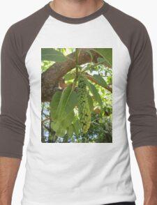 Fruit of the elephant tree Men's Baseball ¾ T-Shirt