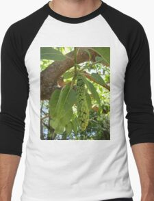 Fruit of the elephant tree Men's Baseball ¾ T-Shirt