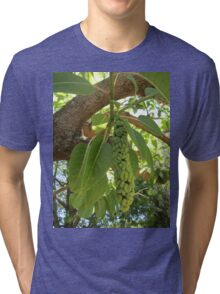 Fruit of the elephant tree Tri-blend T-Shirt