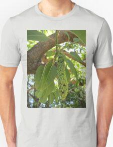 Fruit of the elephant tree Unisex T-Shirt
