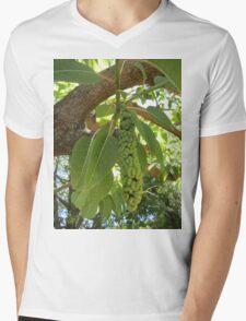 Fruit of the elephant tree Mens V-Neck T-Shirt