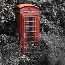 Telephone Box  by alan tunnicliffe