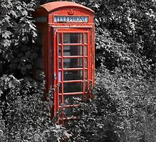 Telephone Box  by alan tunnicliffe