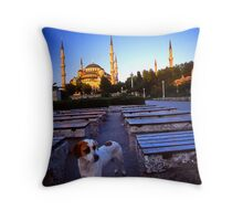 Blue Mosque stray Throw Pillow