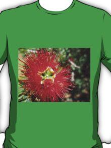 Bottle brush flower T-Shirt