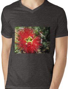 Bottle brush flower Mens V-Neck T-Shirt