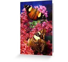Merideth Butterflies Greeting Card