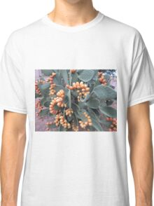 Prickly harvest Classic T-Shirt