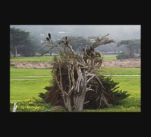 Crows, a Cypress Tree and a Golf Course T-Shirt
