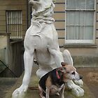 Real Dog Meets Stone Dog by karenuk1969