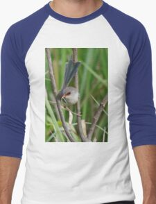 A female Variegated Fairy-Wren Men's Baseball ¾ T-Shirt