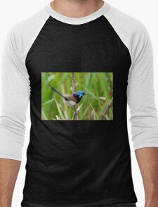 Variegated Fairy-Wren Men's Baseball ¾ T-Shirt