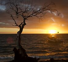 Sunset back at the hotel, Isle des Pins, New Caledonia by Roger Barnes