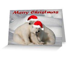 Polar Brothers - Christmas Card Greeting Card