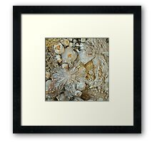 Botryoidal Calcite with Zeolite Framed Print