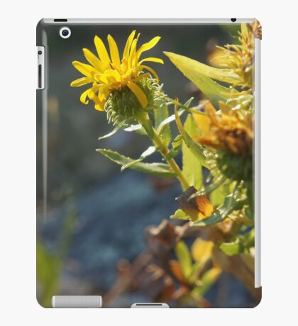 warm evenings iPad Case/Skin