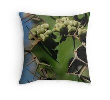 Euphorbia grandicornis Throw Pillow
