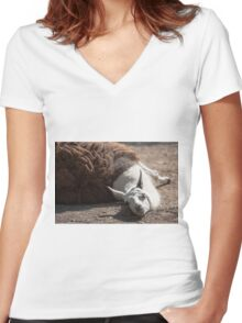 lamas in the farm Women's Fitted V-Neck T-Shirt