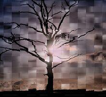 Tree & Sky by Jo Nijenhuis