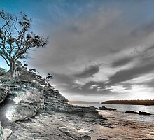 Shadows - Balmoral Beach - The HDR Series by Philip Johnson