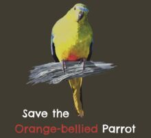 Orange-bellied Parrot products (dark background colours) by OBparrot