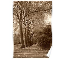 hyde park Poster