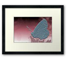 Metallica Moth surveys an alien world Framed Print