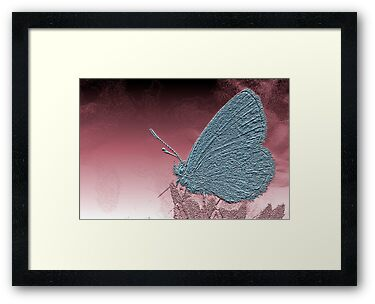 Metallica Moth surveys an alien world by Steve  Woodman