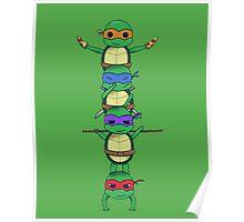 Ninja Turtle Poster