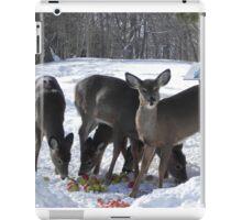 Winter Feast iPad Case/Skin