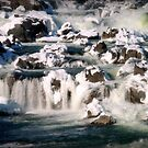 Winter at the Falls by Bine