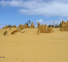 The Pinnacles, Western Australia by toryworgan