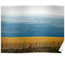 Storm Behind Wheat Field Poster