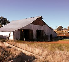 An Old Barn by Laurie Puglia