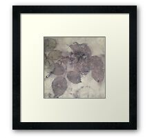 Eco-print with rose leaves Framed Print