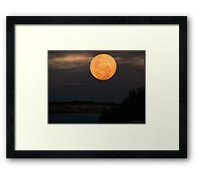 Night Sky In Sydney Framed Print