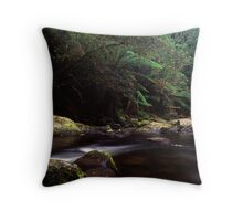 Aire River Throw Pillow
