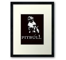 american pitbull Framed Print