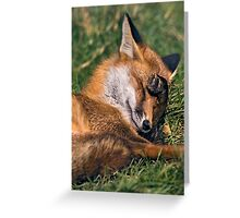 Bashful Greeting Card
