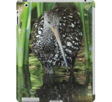 Limpkin on the hunt iPad Case/Skin
